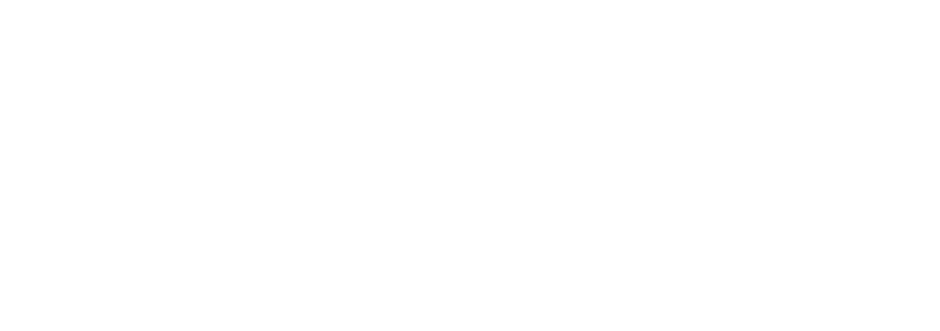WiseAssets_Logo_white